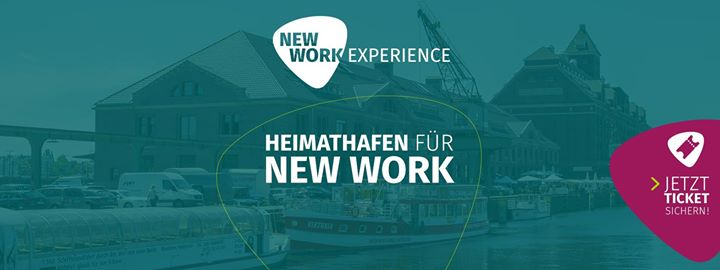 New Work Experience 2017