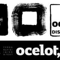 Ocelot² - Die Diskussion