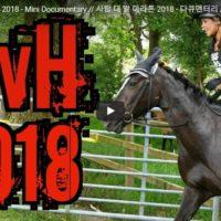 Skurrile Veranstaltungsformate: Man vs Horse Marathon