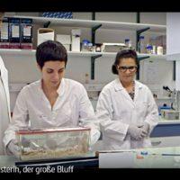ARTE-Doku: Cholesterin, der große Bluff