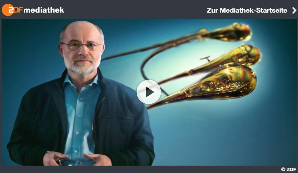 ZDF-Kurzdoku, Terra X: Das Geheimnis der Bologneser Träne