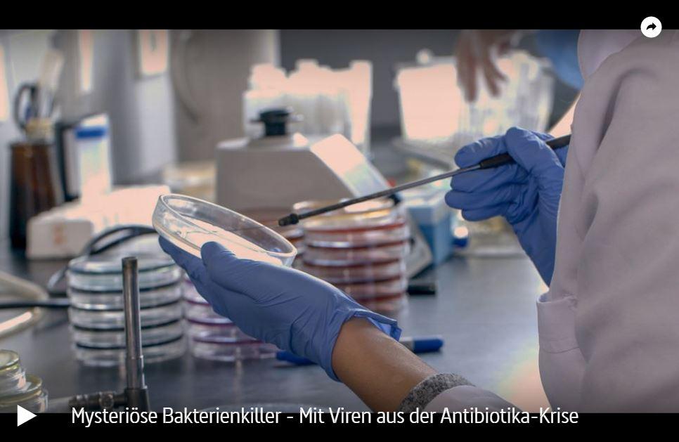 ARTE-Doku: Mysteriöse Bakterienkiller - Mit Viren aus der Antibiotika-Krise