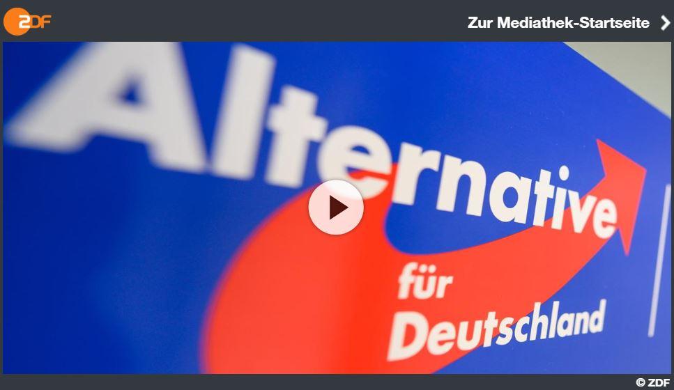 ZDFzoom-Doku: National, rechts, extrem - Machtkampf in der AfD