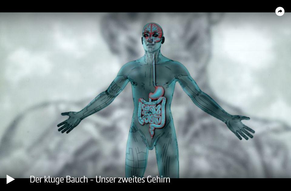 ARTE-Doku: Der kluge Bauch - Unser zweites Gehirn