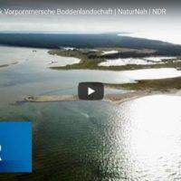 NDR-Doku: Der Nationalpark Vorpommersche Boddenlandschaft