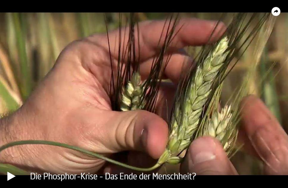 ARTE-Doku: Die Phosphor-Krise - Das Ende der Menschheit?