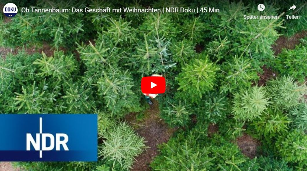 NDR-Doku: Oh Tannenbaum - Das Geschäft mit Weihnachten