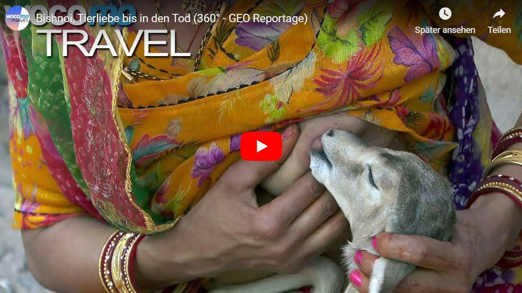 360° - GEO Reportage: Bishnoi, Tierliebe bis in den Tod