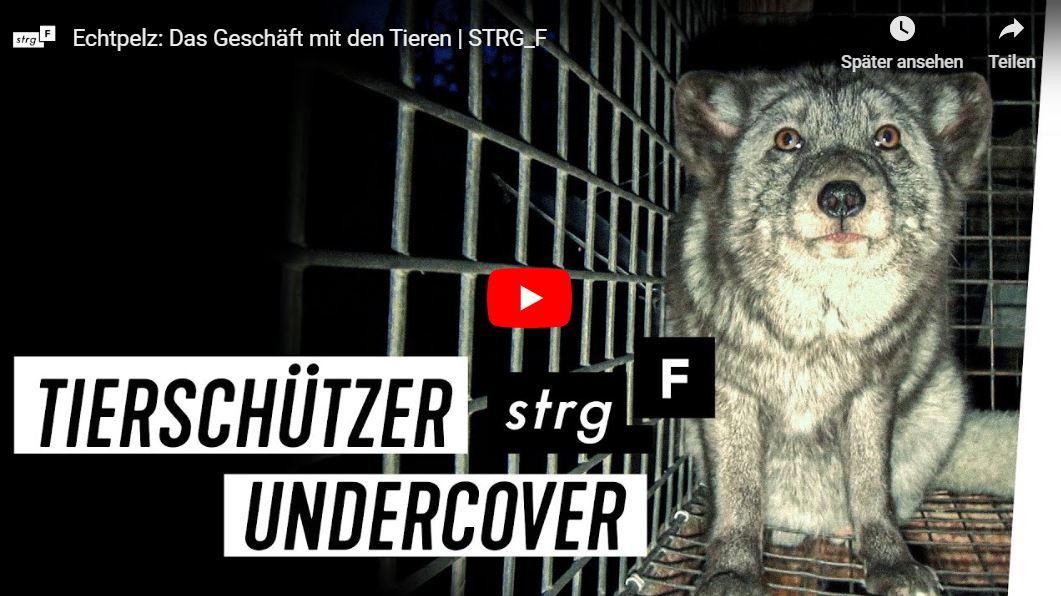 STRG_F-Doku: Echtpelz - Das Geschäft mit den Tieren