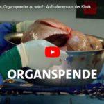 SWR-Doku: Was bedeutet es, Organspender zu sein?