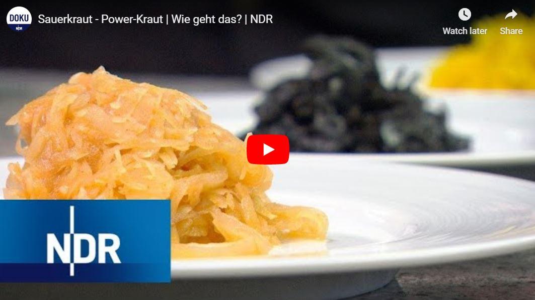 NDR-Doku: Sauerkraut - Power-Kraut