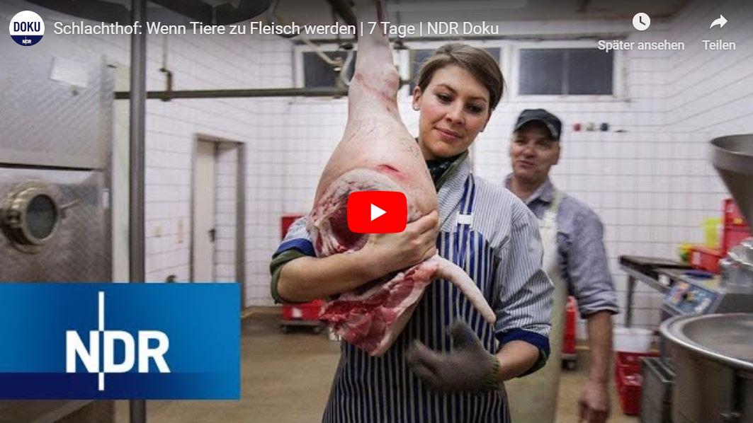 NDR-Doku: Schlachthof - Wenn Tiere zu Fleisch werden | 7 Tage