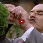 Being Poirot // Doku-Empfehlung von Mario Nowak