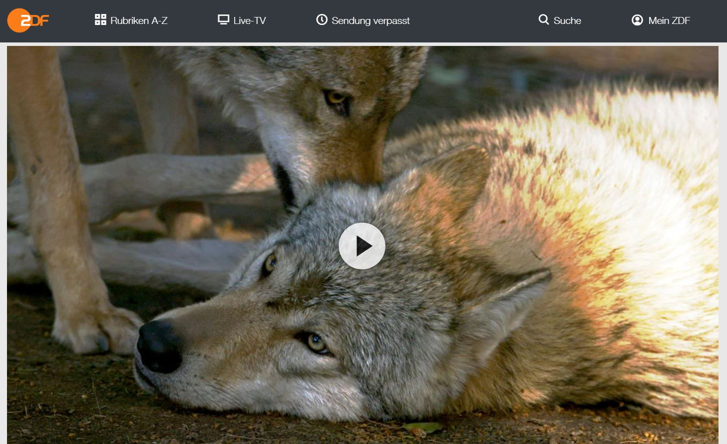 ZDF-Doku: Die Kommunikation der Tiere (3 Teile)
