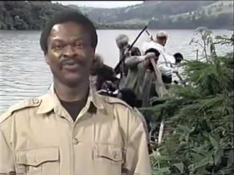 ORF-Mockumentary: Das Fest des Huhnes (1992)