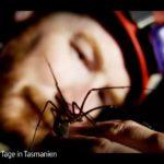 ARTE-Doku: Prähistorische Riesenspinnen - Unter Tage in Tasmanien