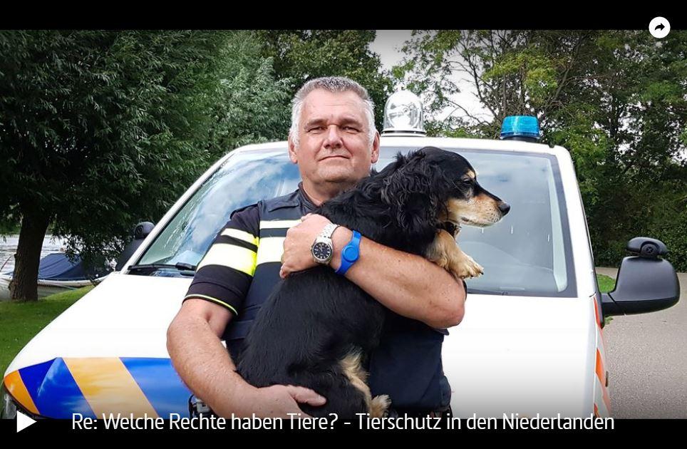 ARTE-Reportage: Welche Rechte haben Tiere? - Tierschutz in den Niederlanden