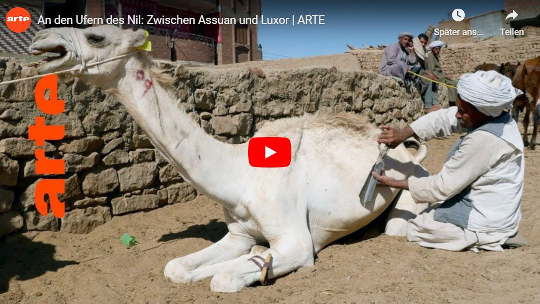 ARTE-Doku: An den Ufern des Nil - Zwischen Assuan und Luxor
