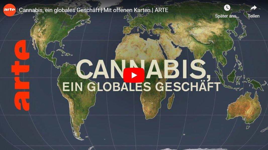 ARTE: Cannabis, ein globales Geschäft | Mit offenen Karten