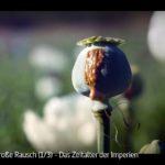 ARTE-Doku: Der große Rausch - Die ersten Drogenimperien (3 Teile)
