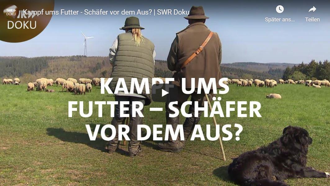 SWR-Doku: Kampf ums Futter - Schäfer vor dem Aus?
