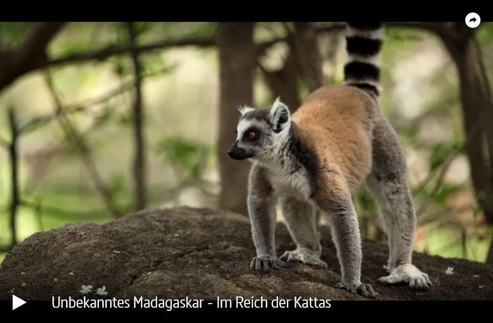 ARTE-Doku: Unbekanntes Madagaskar (2 Teile)
