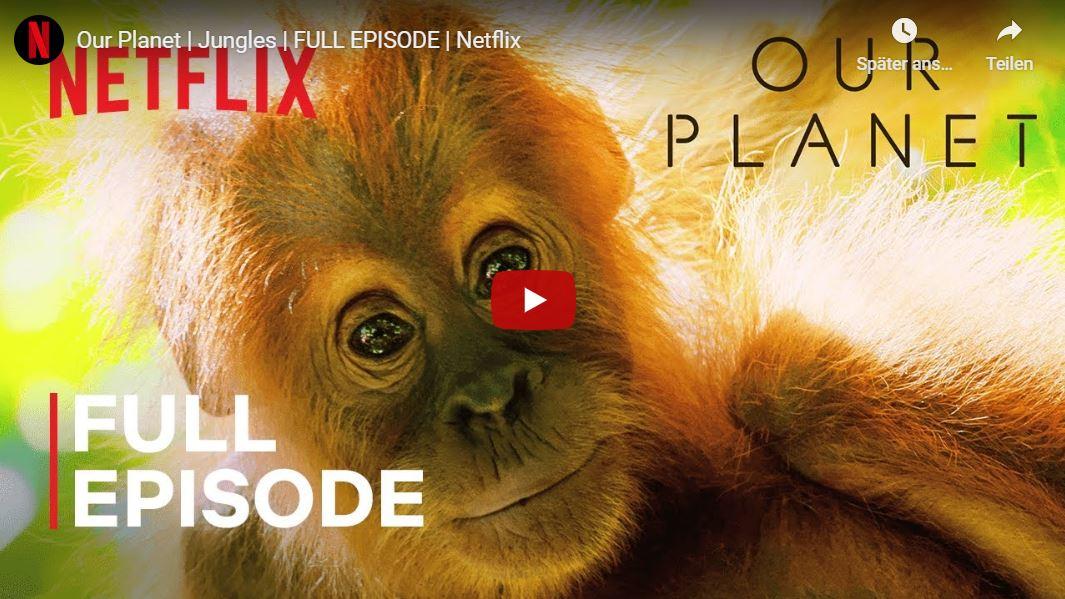 Netflix veröffentlicht 34 Dokus kostenlos wegen US-Schulschließung