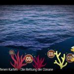 ARTE: Die Rettung der Ozeane | Mit offenen Karten