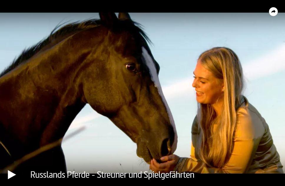 ARTE-Doku: Russlands Pferde - Streuner und Spielgefährten