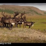 ARTE-Doku: Unterwegs im Ural