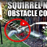Mark Rober: Building the Perfect Squirrel Proof Bird Feeder // Doku-Empfehlung von Pauline Kortmann