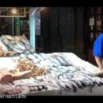 ARTE-Doku: Die Gier nach Lachs