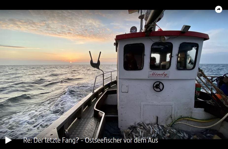 NDR-Doku: Der letzte Fang? Ostseefischer vor dem Aus