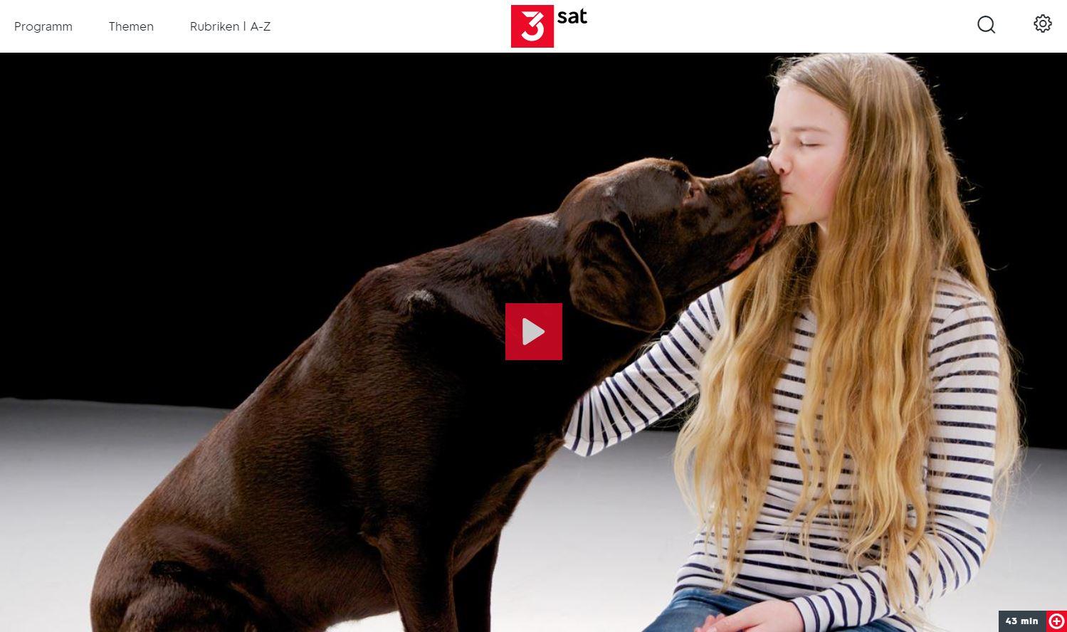 Arte Hund Und Mensch