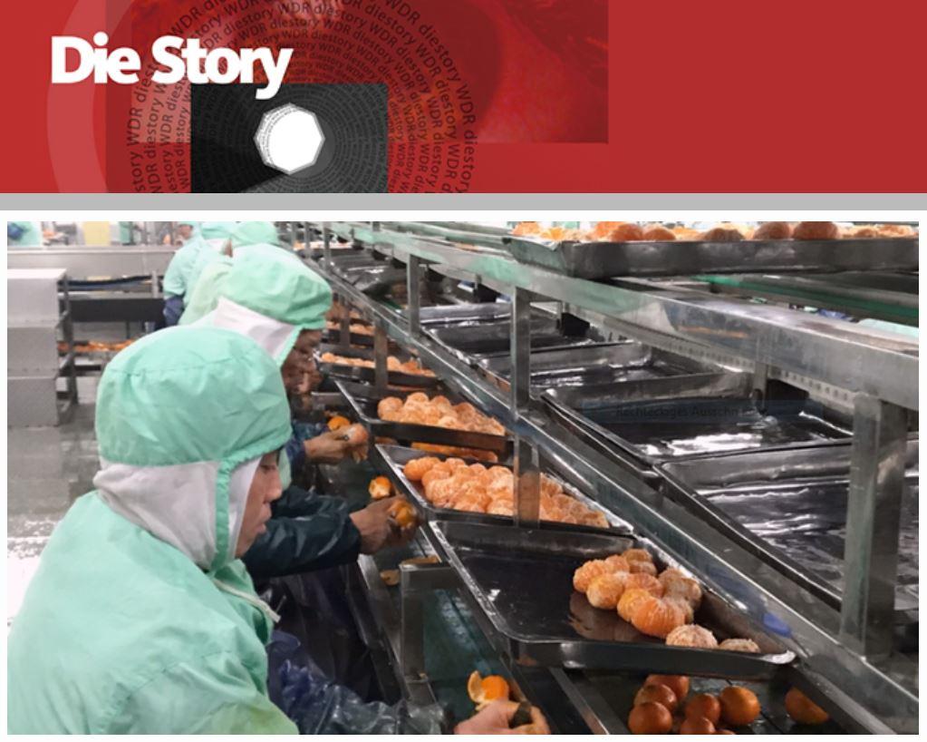WDR-Doku: China in Dosen - Billige Lebensmittel aus Fernost