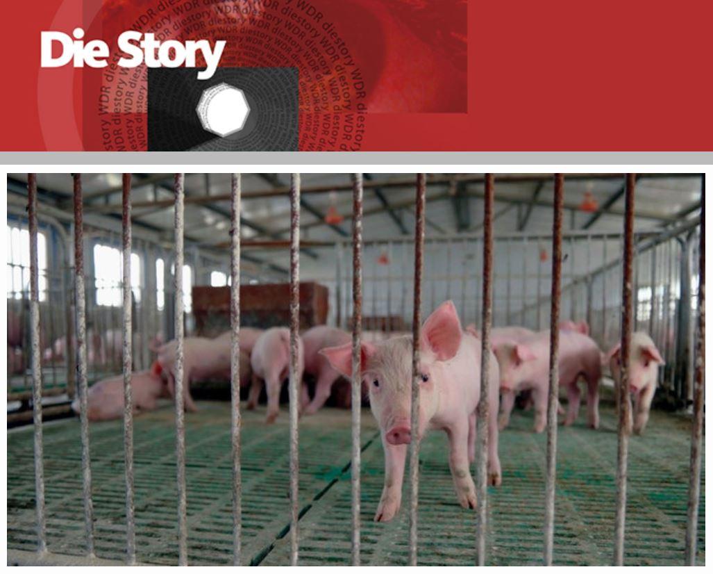 WDR-Doku: Das Geschäft mit der Welternährung