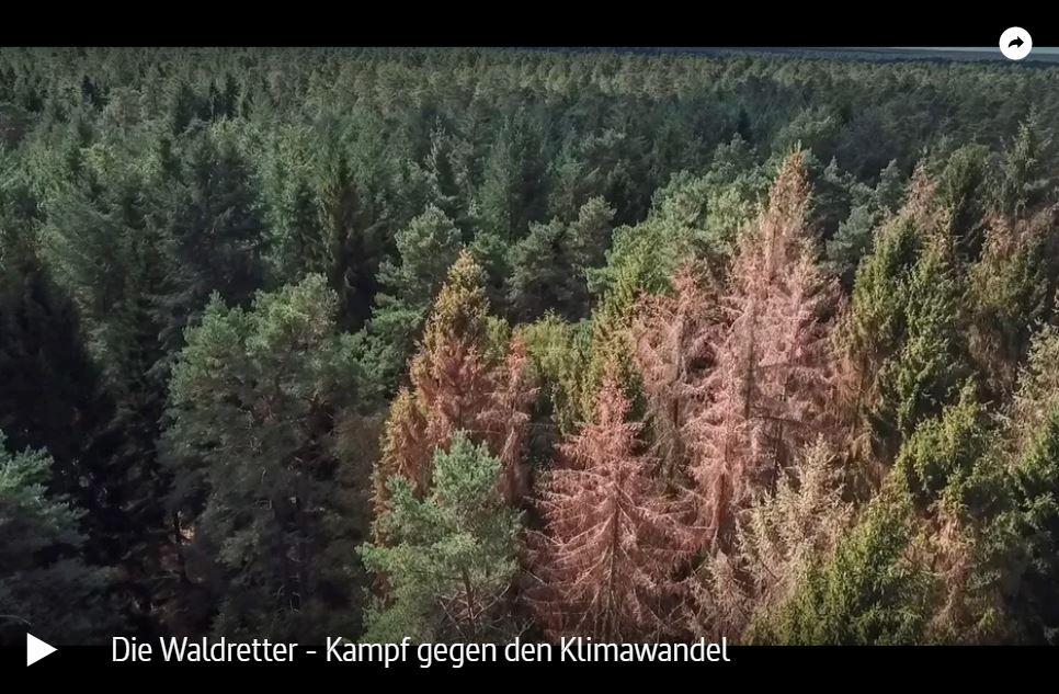 WDR-Doku: Die Waldretter - Einsatz für den Wald der Zukunft (5 Teile)