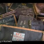 ZDF-Doku: Ein Tag in Auschwitz