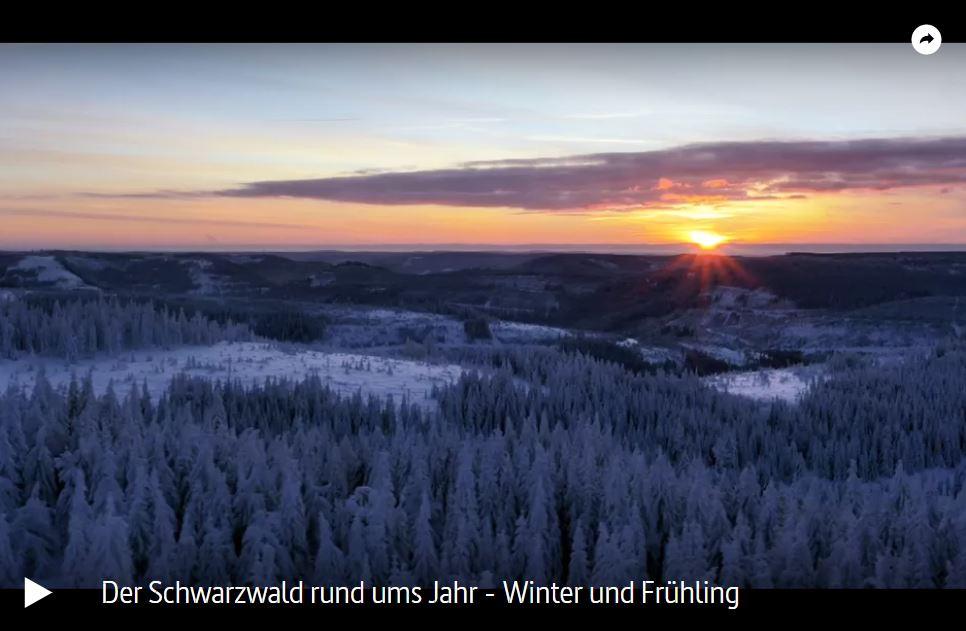 ARTE-Doku: Der Schwarzwald rund ums Jahr (2 Teile)
