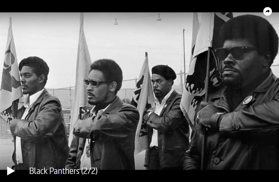 ARTE-Doku: Black Panthers (2 Teile)