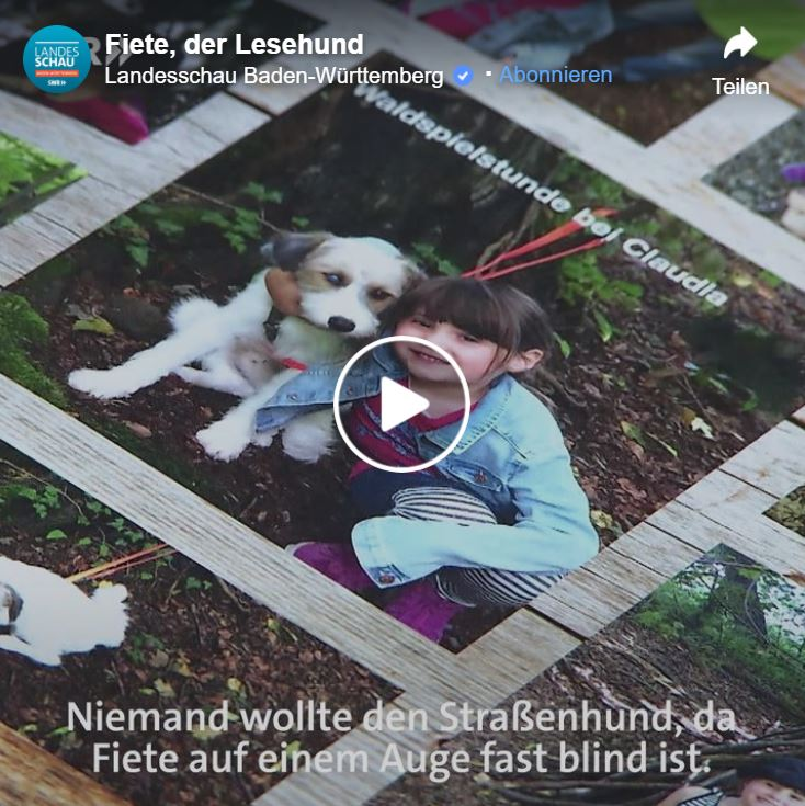 Fiete - die Stadtbibliothek Heilbronn hat einen Lesehund