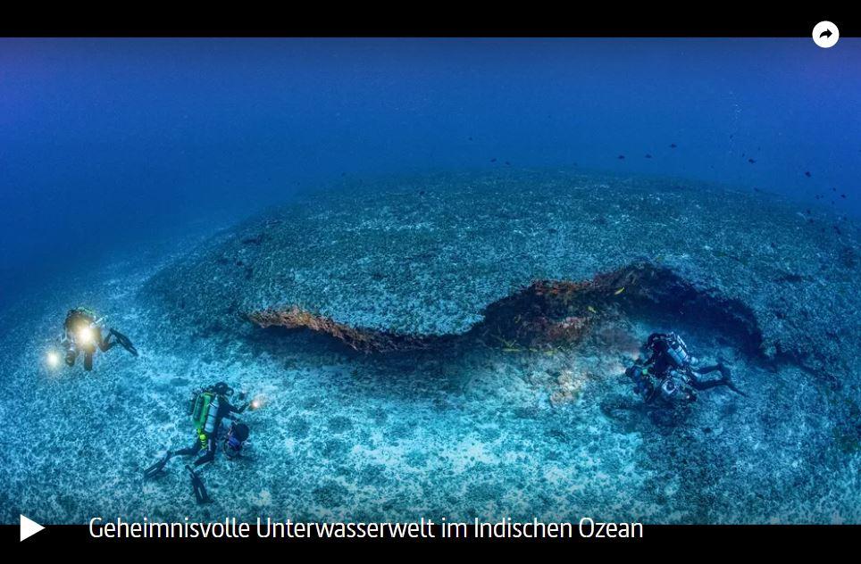 ARTE-Doku: Geheimnisvolle Unterwasserwelt im Indischen Ozean