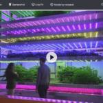 ZDF-Doku: Genial konstruiert - Technik in der Landwirtschaft