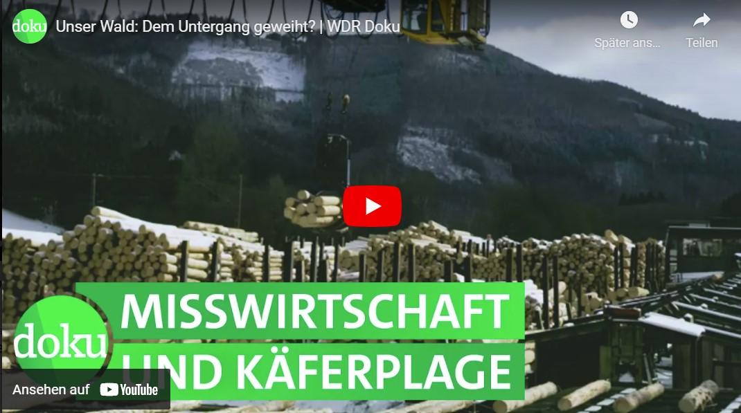 WDR-Doku: Unser Wald - Dem Untergang geweiht?
