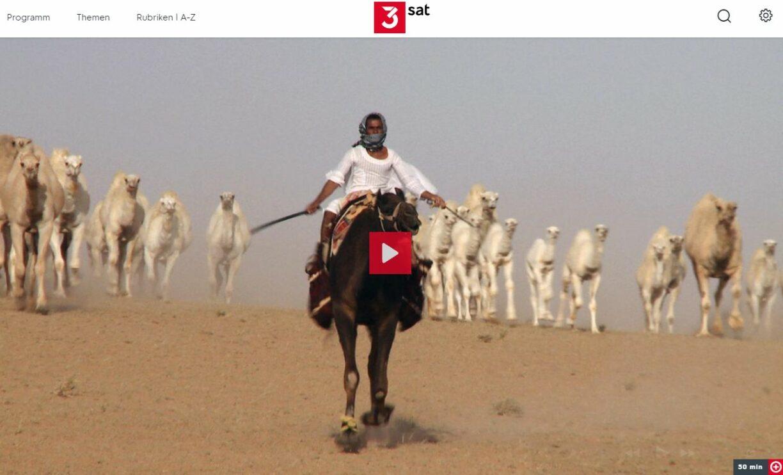 3sat-Doku: Wüstenschiffe - Von Kamelen und Menschen